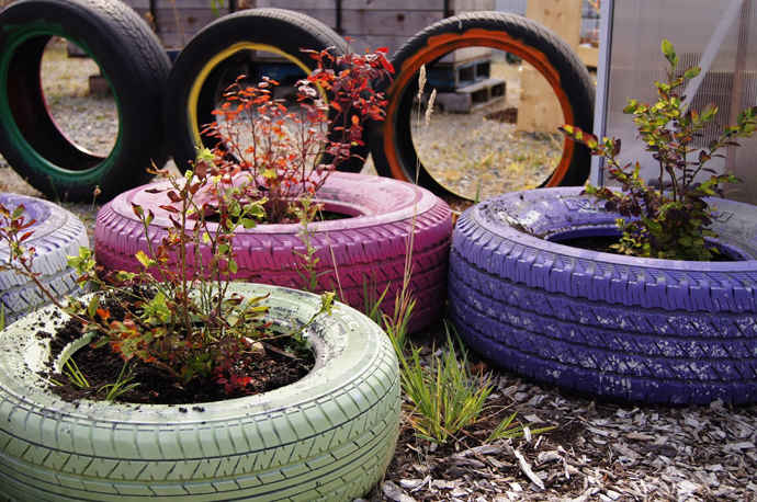 Recycle the items for backyard
