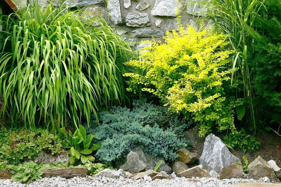 5 Garden Ideas You May Not Have Considered - Gardening flowers 101 ...