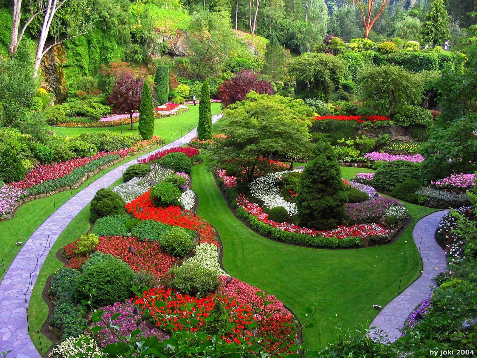 How to choose the best garden designer gardening flowers Designer gardens