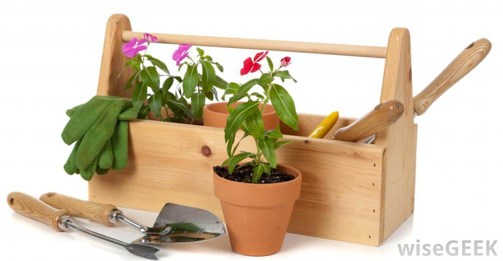Online shopping for gardening supplies gardening flowers 101 for Garden accessories online