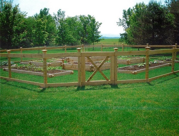 Fine Garden Fence Ideas Fences Vegetable And Design