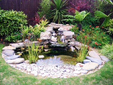 Backyard garden pond ideas gardening flowers 101 Garden pond ideas