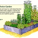 backyard vegetable garden layout cook's choice garden
