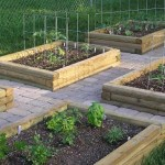 backyard vegetable garden layout