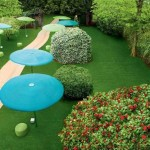 beautiful yard design