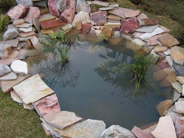 Cheap garden pond ideas gardening flowers 101 gardening flowers 101 - Cheap pond ideas ...