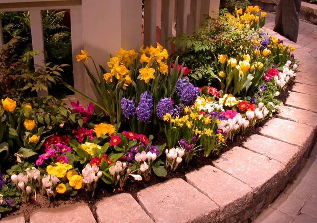 How to keep flowers fresher for longer gardening flowers 101 flower bed ideas front of house workwithnaturefo