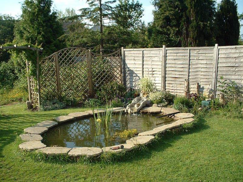 Garden fish ponds pictures gardening flowers 101 for Garden pond designs pictures
