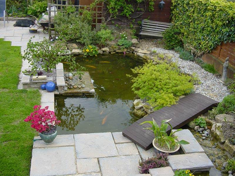 Garden pond design ideas gardening flowers 101 gardening for Koi fish pond garden design ideas