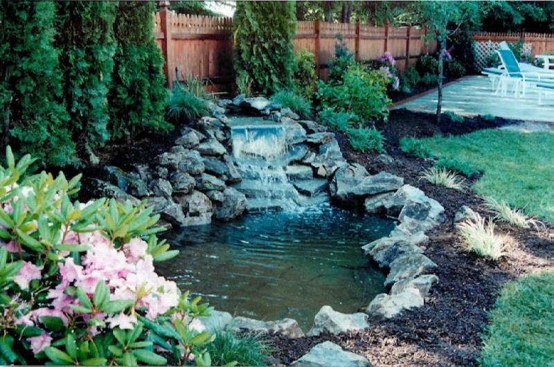 Garden pond design ideas you can try gardening flowers for Garden pond 101
