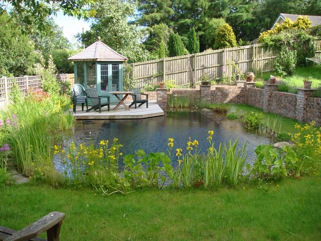 Garden pond ideas natural wildlife gardening flowers 101 for Natural garden pond