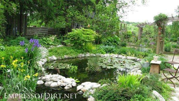 Garden pond pictures images gardening flowers 101 for Garden pond 101