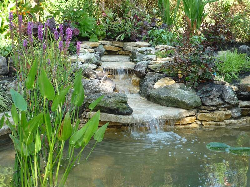 Garden ponds and waterfalls designs gardening flowers for Garden pond 101