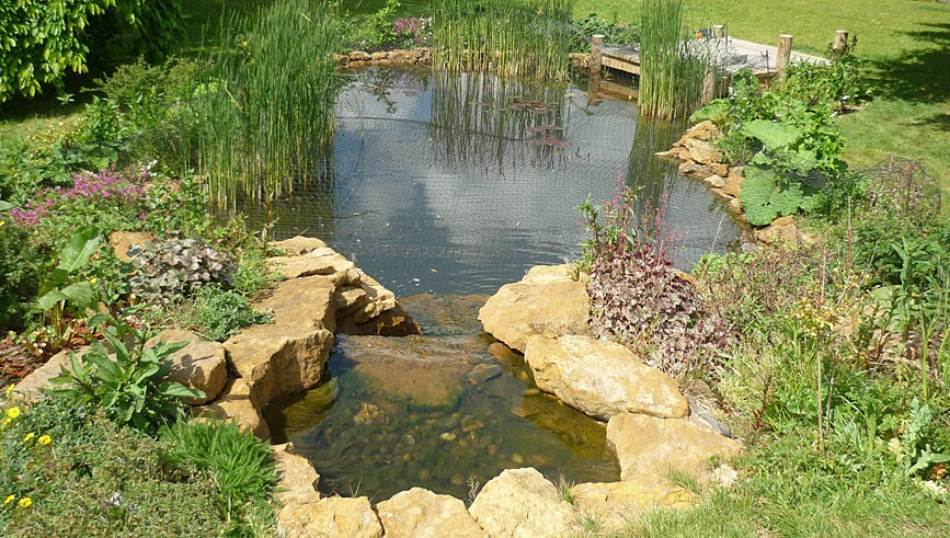 Garden ponds design p ctures gardening flowers 101 for Garden pond 101