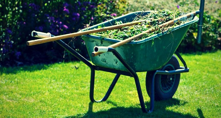 garden wheelbarrow