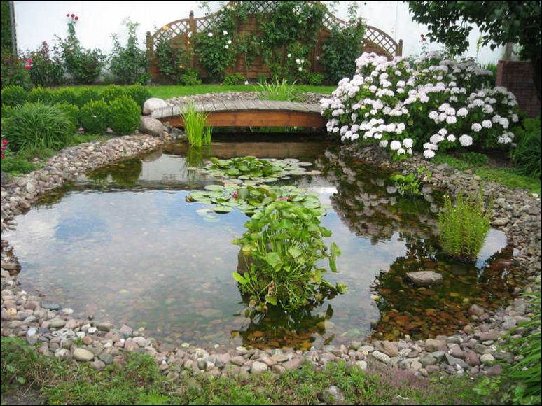 Large garden pond designs gardening flowers 101 for Large garden design ideas