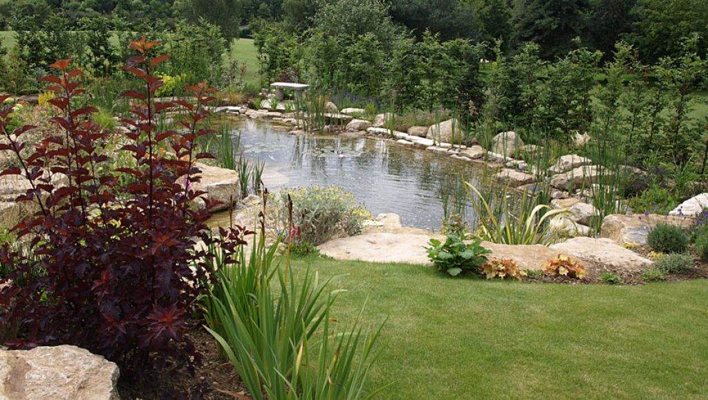 Large garden pond designs gardening flowers 101 for Garden pond 101
