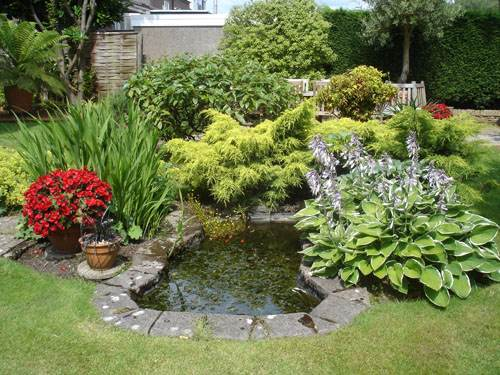 Mini garden pond designs gardening flowers 101 gardening for Garden pond 101