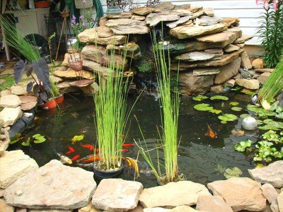 Outdoor pond decor gardening flowers 101 gardening for Garden table fish pond