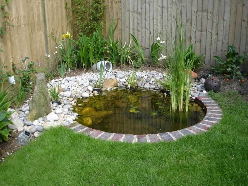Plastic garden pond designs gardening flowers 101 for Garden pond 101