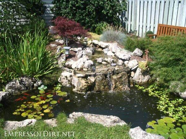 Plastic garden pond designs gardening flowers 101 for Still pond garden design