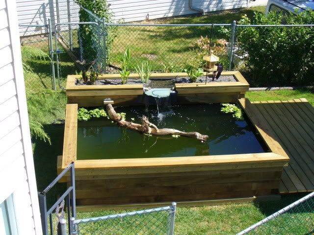 Raised garden pond designs gardening flowers 101 for Raised fish pond ideas