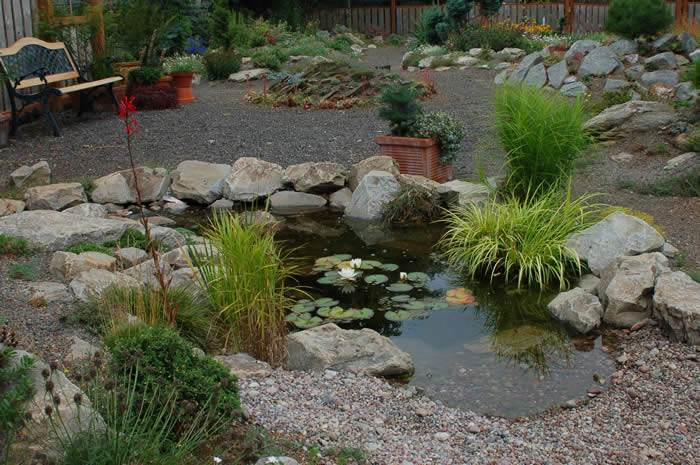 Gallery for rock garden pond pictures for Rock ponds designs