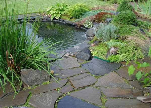 Small garden pond designs gardening flowers 101 for Still pond garden design