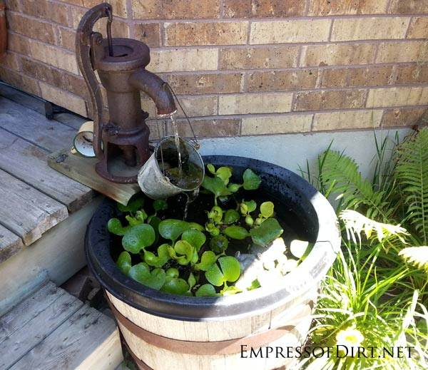 Small garden pond fountain gardening flowers 101 for Small pond fountains