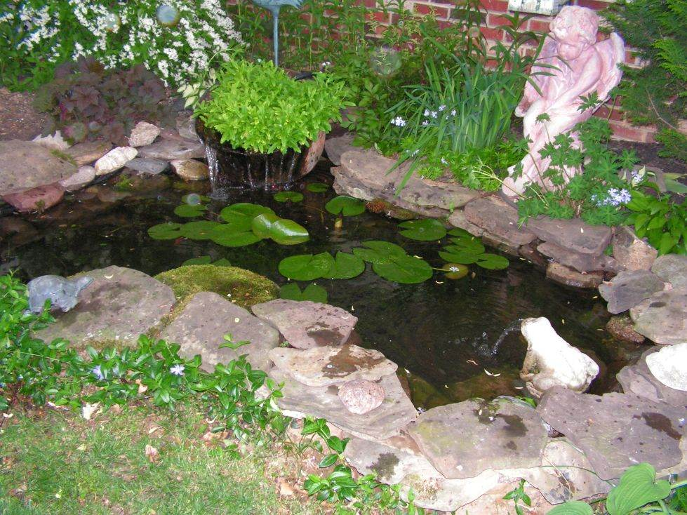 Small Backyard Pond Designs find this pin and more on home backyard small pond with waterfall example Small Garden Ponds Designs Backyard Pond 439