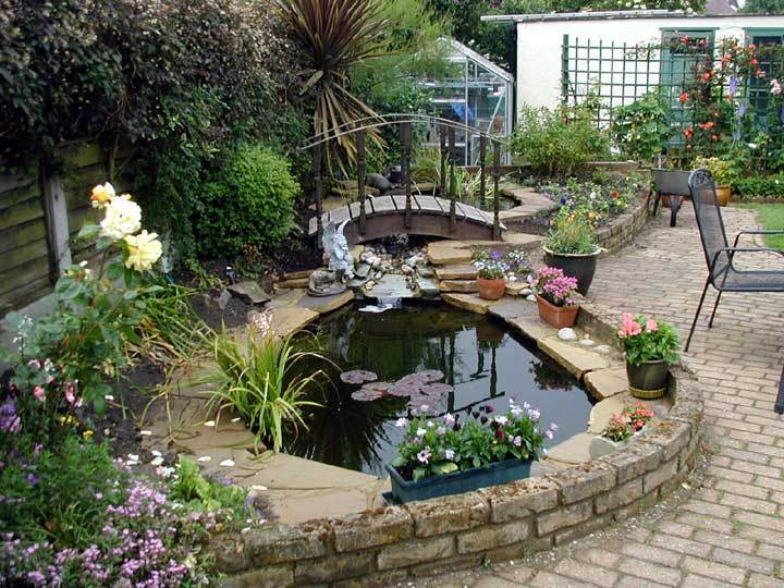 Small garden ponds designs backyard pond gardening for Small garden fish pond designs