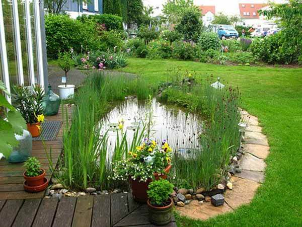 Small Pond Pictures Ideas Gardening Flowers 101