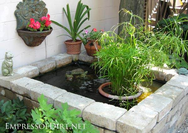 Small pond pictures ideas gardening flowers 101 for Small pond ideas pictures
